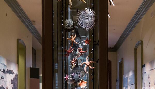 foto de detalhe da iluminação em museu
